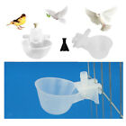 10xChicken Poultry Automatic Watering System Cup Bird Pigeon Drinker Feeder Bowl