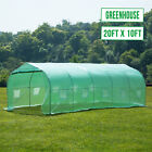 Walk in Greenhouse Steeple Larger Hot Green House Canopy Outdoor Plant Gardening