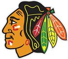 Chicago Black Hawks Nhl Color Die Cut Vinyl Decal Sticker - You Choose Size
