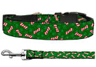 Candy Cane Bones Christmas Nylon Cat and Dog Collar and Leash Combo