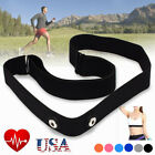 Elastic Chest Belt Strap For Garmin Wahoo Polar Sport Heart Rate Monitor USA