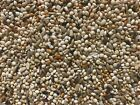 Brid Food Canary seed mix breeders millet small bird food Free Fast Shipping