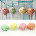 LX_ SHELL SHAPE SQUIRREL HAMSTER TEETH MOUTH GRINDING STONE PARROT CAGE TOY CL