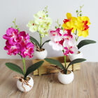 29cm Artificial Butterfly Orchid Flower Fake Plants Home Decor Wedding Party Diy
