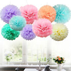 Happy Birthday Foil Balloons Banner Bunting Tissue Paper Pompoms Party Decor