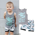 US Casual Toddler Kids Baby Boy Tops Tee T-shirts Pants 2Pcs Outfit Clothes Set