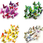 12 Pcs Butterfly Wall Stickers 3d Pvc Children Room Decal Home Decoration Hoot