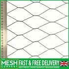 Green PVC Coated Chicken Rabbit Wire Mesh (50mm Hole) Garden Aviary Fencing