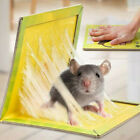 Strong Mice Trap Board Household Catch Rat Poison Big Sticky Super Rats Board UK