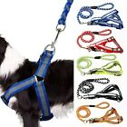 Reflective Nylon Dog Harness and Leads Leash Set for Small Dog Puppy Walking New