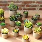 Mini Artificial Succulents Plant Fake Cactus Floral Craft Home Office Decor