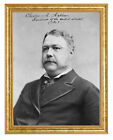 Chester A. Arthur Photograph in a Aged Gold Frame
