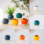 Plant Flower Pots Ceramic Ball Vases Planter With Metal Holder Home Office Decor