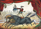 3444 Vintage Poster.Powerful Graphic Design.Stunts on horses.Circus. Art Decor
