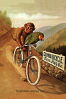 AMERICAN COLUMBIA BICYCLE BIKE PARROT MONKEY HEAVENLY TIME VINTAGE POSTER REPRO