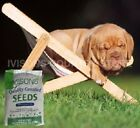 LAZY LAWN GRASS SEED VERY LOW MAINTENANCE & LOWER WASTE CHOICE OF SIZES NEW