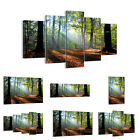 44 Shapes PREMIUM Canvas Picture/Print Wall Art Forest Sun Rays 0136 en