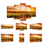 Canvas Picture 30 Shapes Print Vineyard View Countryside 0170 UK