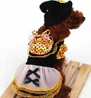 Black & Orange Witch dog Costume Hat Dress Party Photo small cat dog Clothes