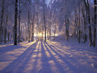 Winter Sunset Alaska Snow Scene Canvas Pictures Wall Artwork Prints All Sizes