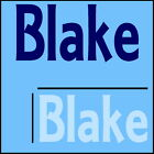 Blake Wall Quote! 44x100cm Interior Home Transfer, Removable Boys Room Sticker