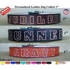 Large Leather Dog Collars - Dog Name Collar - Dog Collar Leather - Unique Collar