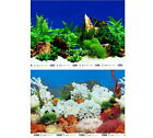 """Background poster 12"""" tall (30cm) Fish Tank Aquarium 2 sided coral water plants3"""