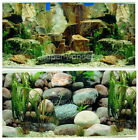 """Aquarium Fish Tank poster 16""""H Background Double sided picture rock stone 3"""