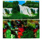 "Fish Tank Aquarium 20"" H(50cm) Background 2 sided picture image wallfall coral 9"