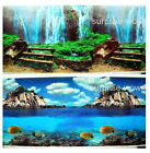 "Fish Tank Aquarium 24"" H(60cm) Background 2 sided picture image wallfall rock 1"
