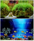 "Fish Tank Aquarium 24"" H(60cm) Background 2 sided picture image Mountain sea 2"