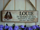 PERSONALISED SPRINGER SPANIEL IN MEMORY SIGN SPRINGER SPANIEL MEMORIAL PLAQUE
