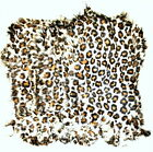 Rabbit Pelts Hides Fur Stenciled Leopard Free Shipping