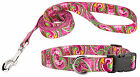 Country Brook Design® Deluxe Collar & Leash - Paisley Collection