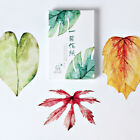 30 pcs/box Various Leaves Shape Greeting Card Postcard Unique Gift Card Set