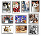Cat Fridge Magnets - Kitten, Choose