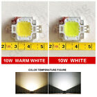 2X10W LED SMD Chip Bulbs Beads  Power for Floodlight Lamp White/Warm Lighting