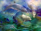 Home Decor HD Print Animal art oil painting on canvas Dolphin (No stretch) ys105