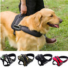 4 Colors Large Dog Harness Vest Adjustable Sport Working Tanning