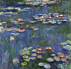 Handmade Oil Painting Art repro Claude oscar Monet the water Lily on Canvas Wa20