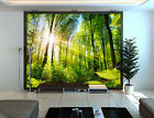 3D Forest Sunshine 872 WallPaper Murals Wall Print Decal Wall Deco AJ WALLPAPER