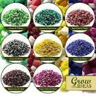 Verona Gravel Miniature Gardens Aquarium and Terrariums Colors 3-6MM | 500G