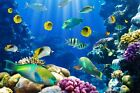 3D Seabed fish 351 WallPaper Murals Wall Print Decal Wall Deco AJ WALLPAPER