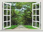 3D Forest trail window WallPaper Murals Wall Print Decal Wall Deco AJ WALLPAPER