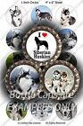 "Love Siberian Huskies Puppy Dogs (R971) Pre-Cut 1"" Circle Bottle Cap Images"