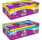 WHISKAS 1+ POUCHES - (x2 - x40) 100g - Cat Food Jelly Pet Feed Meal bp PawMits