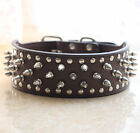 Dark Brown Leather Spikes Studded Pet Dog Collars Pitbull Terrier Boxer S M L XL