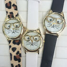 Cat wearing glasses watch black white or leopard bands