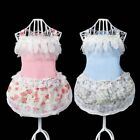 Puppy Pet Dog Floral Lace Dress Cat Doggy Party Skirt Puppy Summer Dress Outfits