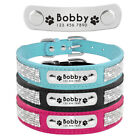 Rhinestone Personalized Dog Collars Engraved Pet Cat Puppy ID Name Collar XS-L